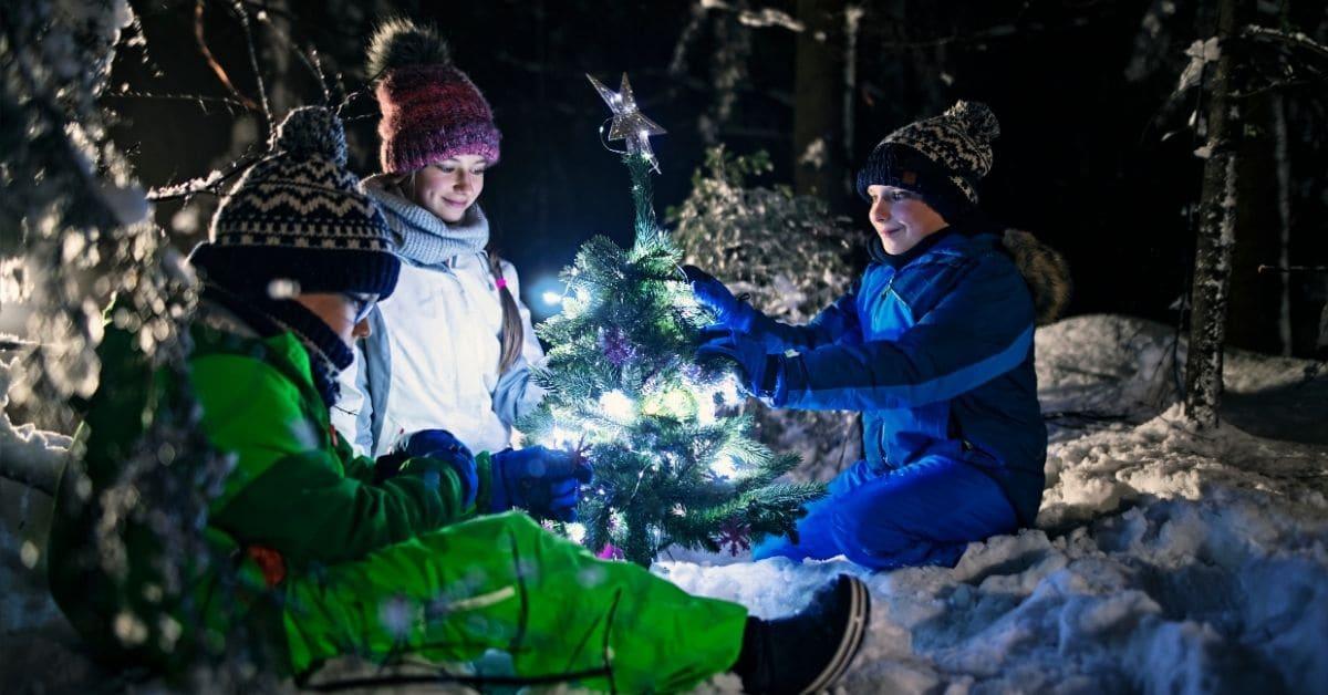 Center Parcs Winter Wonderland Reviews