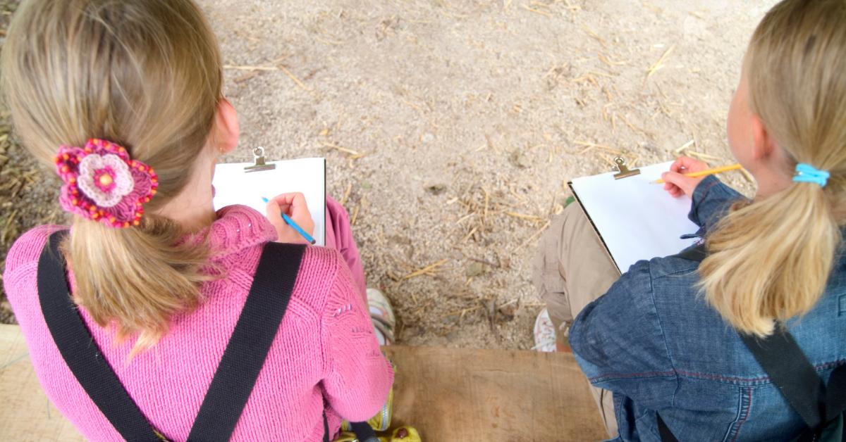 Benefits of an Outdoor Curriculum